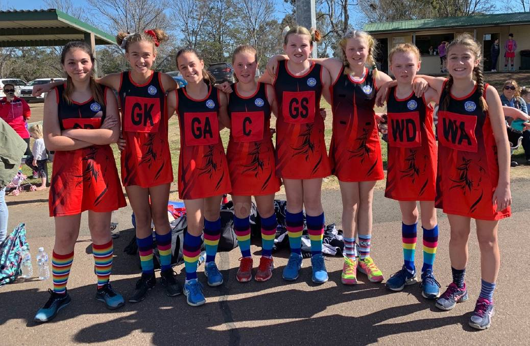 New netball courts to officially open at Scone tomorrow